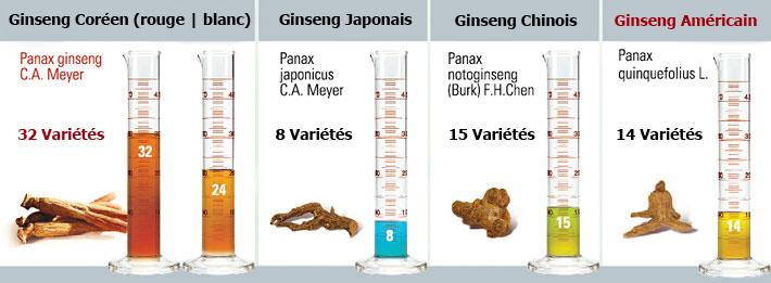 comparatif ginseng