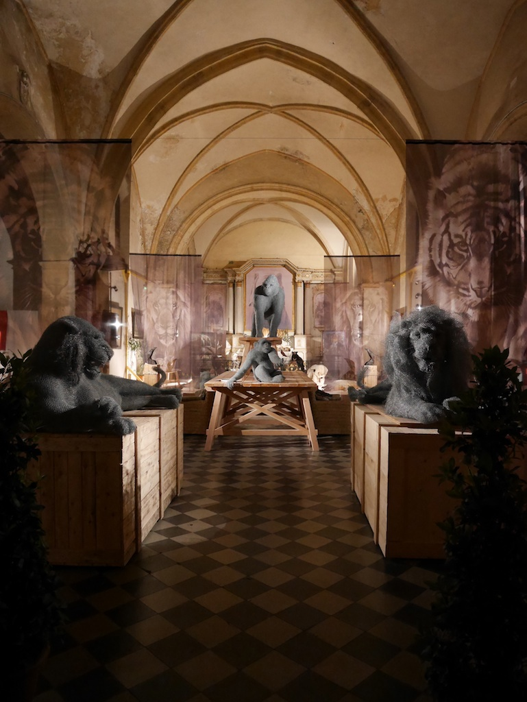 exposition-Beautés-Sauvages-Aurélien-Raynaud