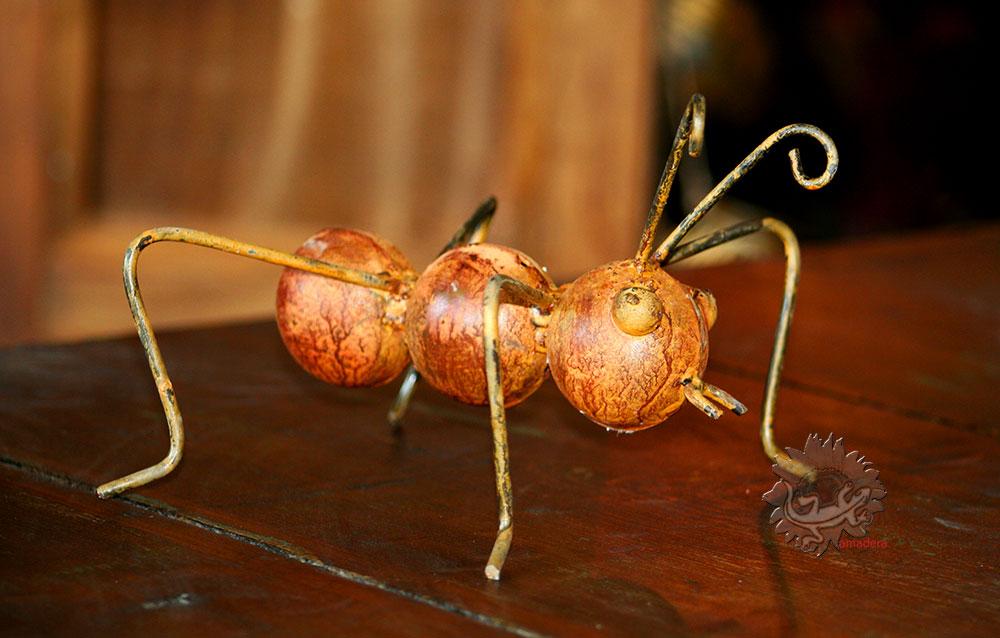 amadera-fourmis-decorative-fer-forgé