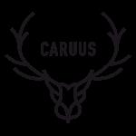 CARUUS logo