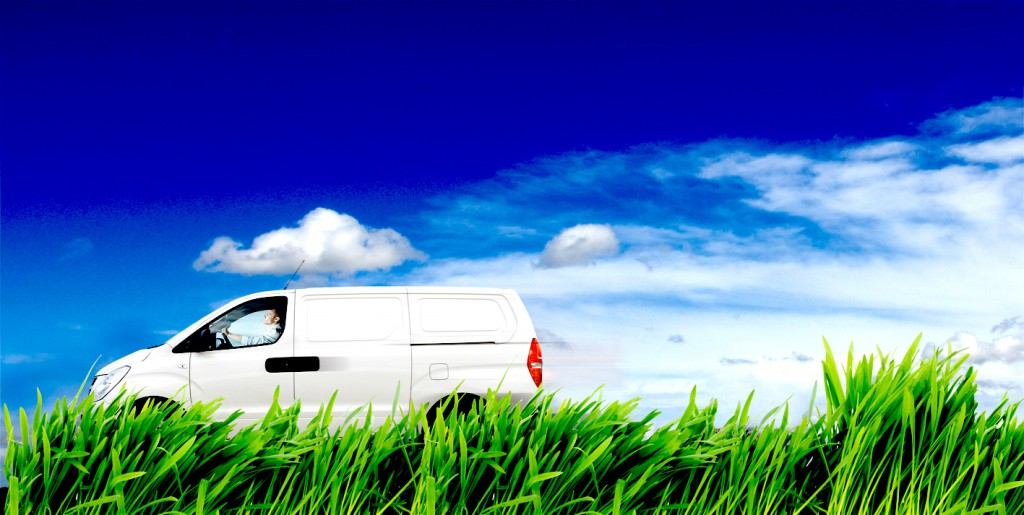 White_van_grass_GREEN_bro1