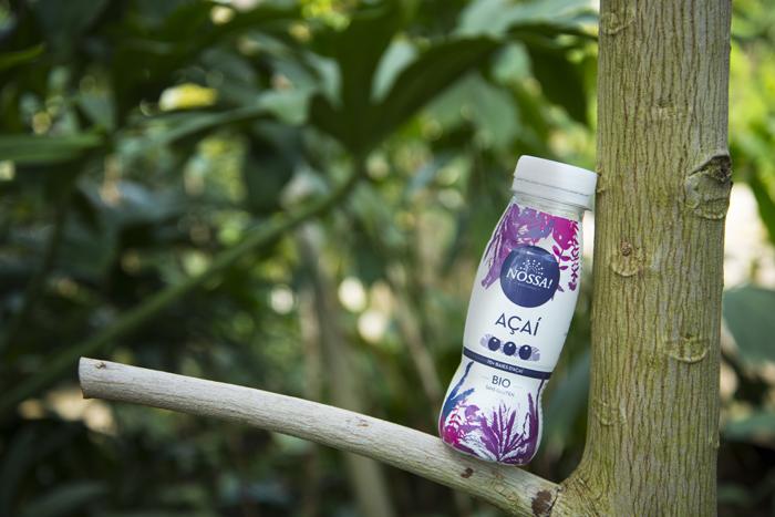 boisson nature arbre-