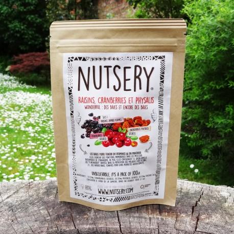raisins-cranberries-et-physalis