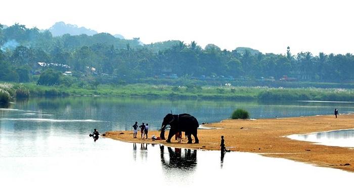 planet-ride-voyage-moto-inde-elephanty