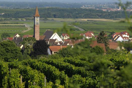 Photo Bennwihr 2