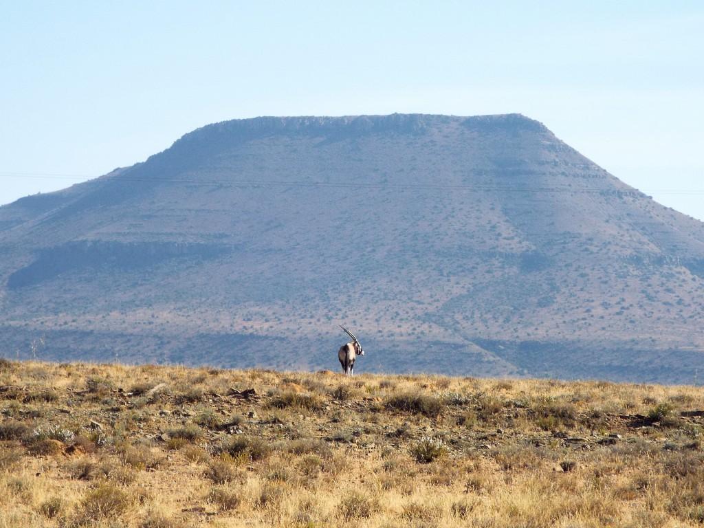 la région du Karoo en Afrique du Sud