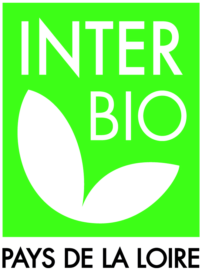 logo IBPDL HD