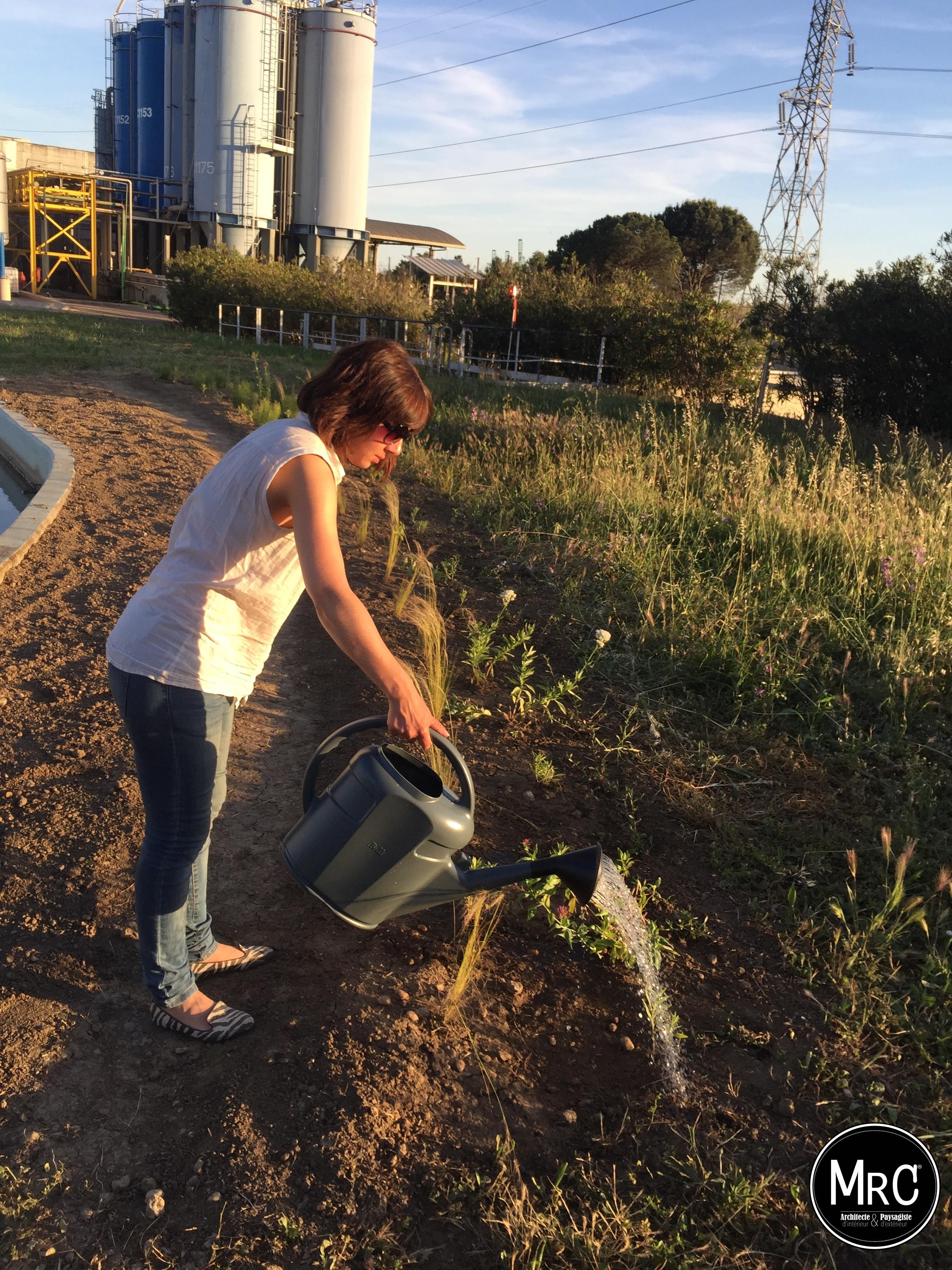 Clara ajmar paysagiste