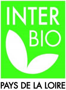 logo-IBPDL-HD