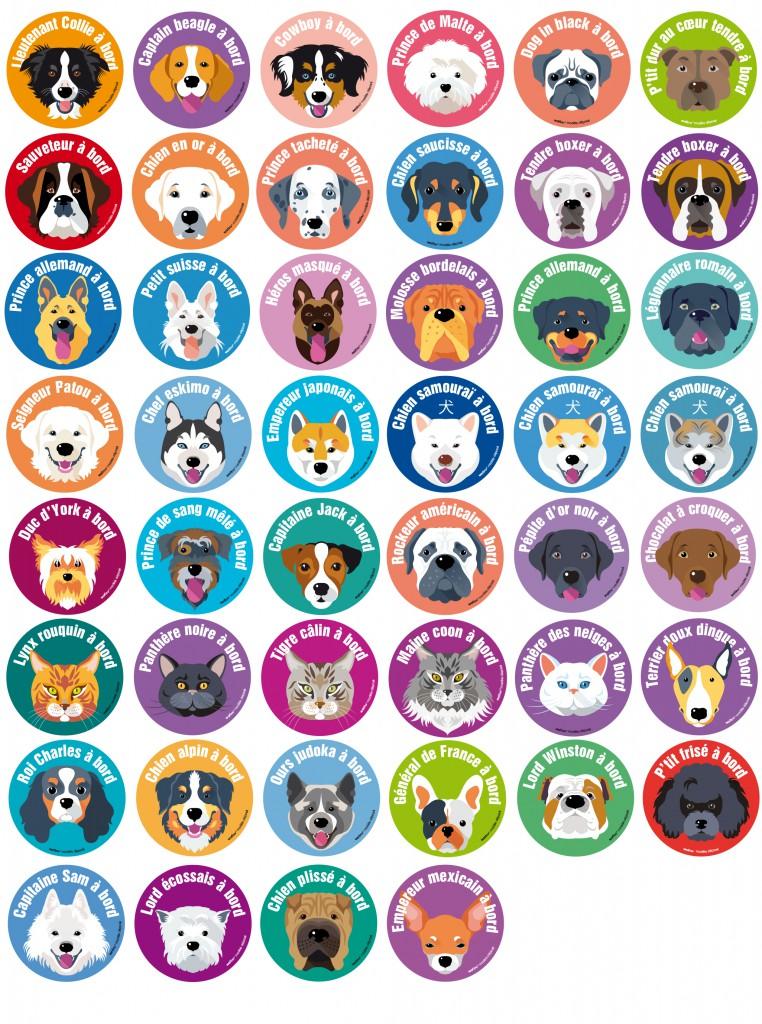 46 races de chiens et chats