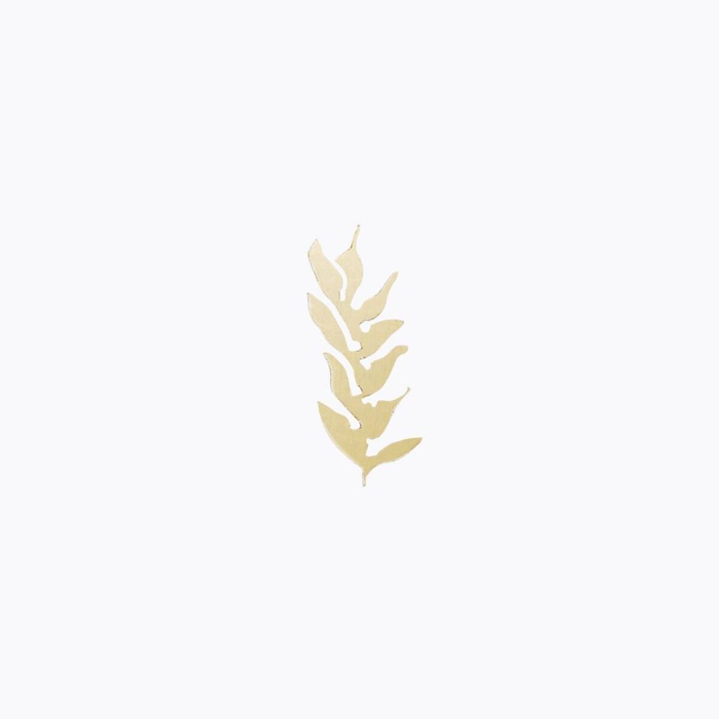 gris gris blé