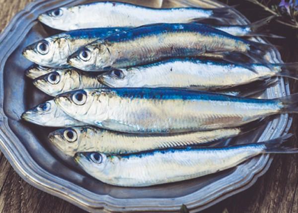 sardines-fraiches