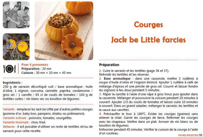 courge recette2 (1)