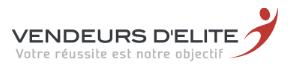 logo VE