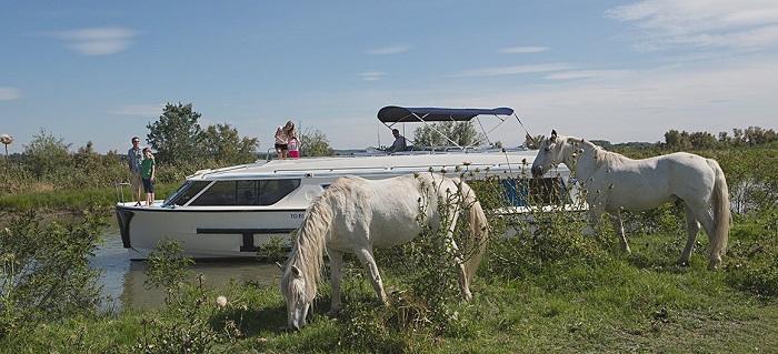vision_widehorses_camargue_france_leboat_glg