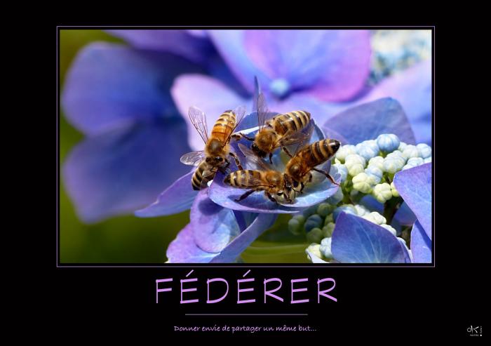 FEDERER-Complet_OK_PostersGallery