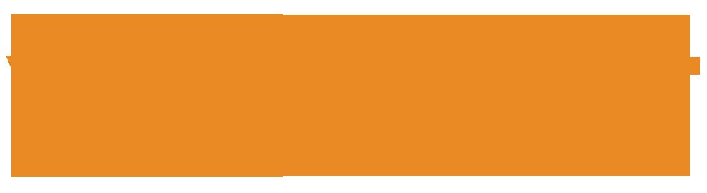 Vitisoft_Logo Orange 1000
