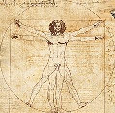 kinesiologie-anatomie