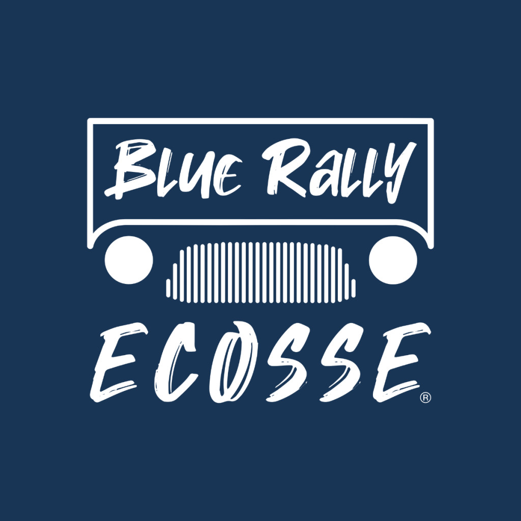 Blue Rally Europe carré