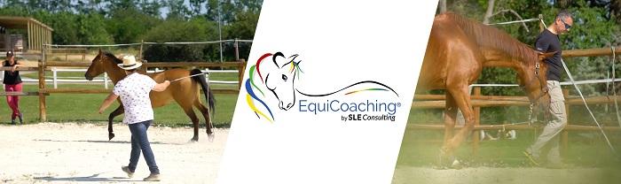 sleconsulting-equicouleus_2