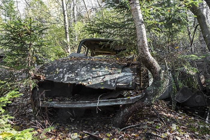 Cimetière de voitures en Suède