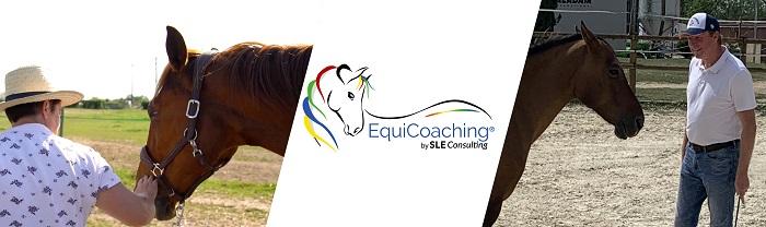 sleconsulting-equicouleus_3