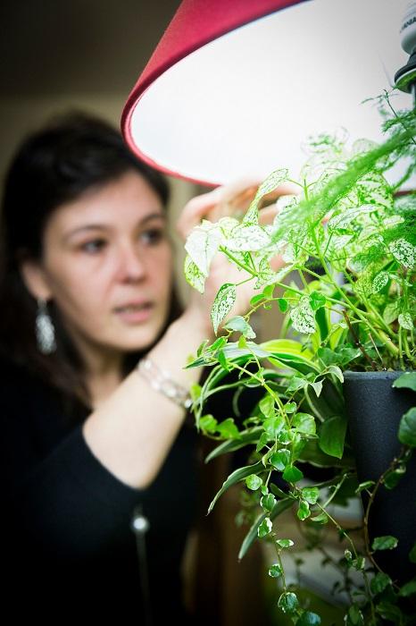 Sophie Fiacre, creatrice de LumiPouss' . concept de lampe vegetale. Quimper (29)